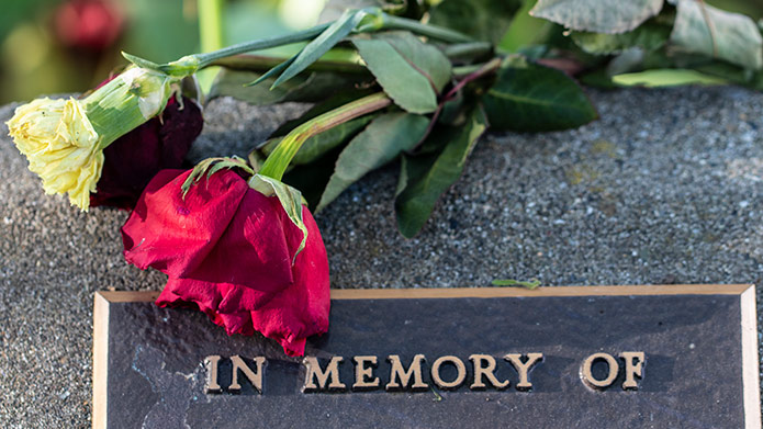 A rose on a headstone that reads 'In Memory Of'