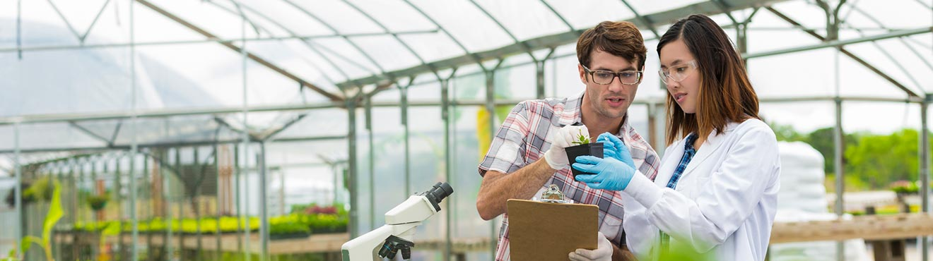 A people in a greenhouse surrounded by equipment such as microscopes. They are examining a plant.